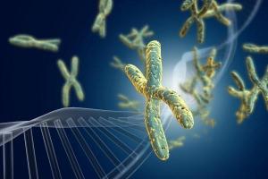Связь ДНК с возникновением псориаза