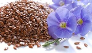 В чем польза или вред семян льна