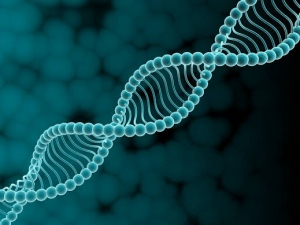 Наследственная теория возникновения псориаза