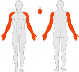 Оценка тяжести патологии по индексу PASI